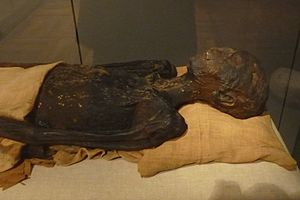 Ahmose (princess) - Princess Ahmose's mummy. Turin, Museo Egizio