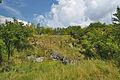 Národní přírodní památka Růžičkův lom, Čelechovice na Hané, okres Prostějov (10).jpg