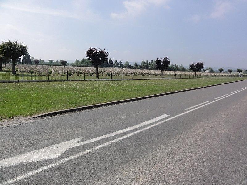 Nécropole Nationale de Pontavert