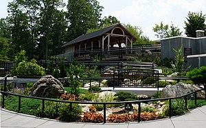 North Carolina Arboretum - Bonsai Garden