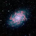 NGC 7793.jpg