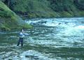 NRCSOR00007 - Oregon (5713)(NRCS Photo Gallery).tif
