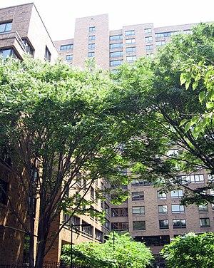 New York University residence halls - The Mercer Street Residence, reserved for law students