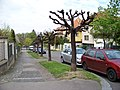 Na Klaudiánce, od ulice Na hřebenech I ke hřbitovu.jpg