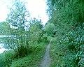 Nad zalewem w Ciechanowcu - panoramio.jpg