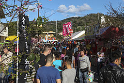 Nago celebrates 52nd annual Cherry Blossom Festival 140125-M-ZH183-405