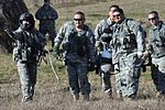 Name change to Multi-National Battle Group-East begins Feb. 1 DVIDS246206.jpg