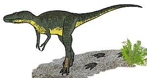 Nanotyrannus - Restoration
