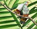 National Aviary (13020186093).jpg