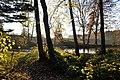 Naturschutzgebiet Unteres Estetal - Angelteich bei Pippensen (1) am Geestrand.jpg