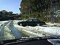Nevada 03-2010 - panoramio.jpg