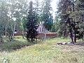 Nevyanskiy r-n, Sverdlovskaya oblast', Russia - panoramio (17).jpg