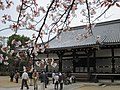 Ninna-ji National Treasure World heritage Kyoto 国宝・世界遺産 仁和寺 京都32.JPG