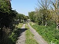 Northern End Of Town Farm Lane - geograph.org.uk - 1449238.jpg