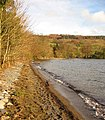 Northern head of Coniston Water - geograph.org.uk - 355267.jpg