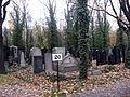 Nový židovský hřbitov (2).jpg
