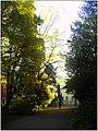 October University Freiburg Plaza - Master Botany Photography 2013 - panoramio (1).jpg
