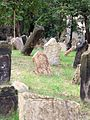 Old Jewish Cemetery, Prague 013.jpg
