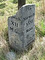 Old Milestone - geograph.org.uk - 1181154.jpg