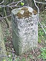 Old Milestone - geograph.org.uk - 1241819.jpg