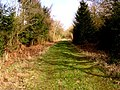 Old Railway Line, towards Longhope - geograph.org.uk - 143384.jpg
