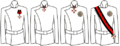 Orden stVladimir styles.png