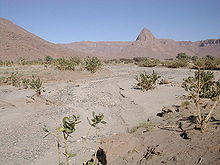 Oued1.jpg