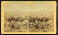 Owl's Head Slide, Jefferson, N.H, from Robert N. Dennis collection of stereoscopic views 3.png