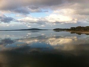Kalgan River - Oyster harbour from lower Kalgan bridge