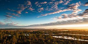 Põhja-Kõrvemaa Nature Reserve - Morning in Põhja-Kõrvemaa Nature Reserve