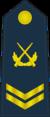 PLAAF-0706-4CSGT.png