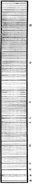 File:PSM V06 D760 Fraunhofer lines in the solar spectrum.jpg