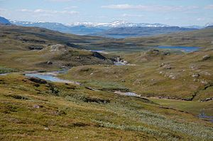 Padjelanta Nationalpark -