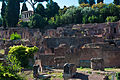 Palatine Hill, Rome, 7 Sept. 2011 - Flickr - PhillipC.jpg