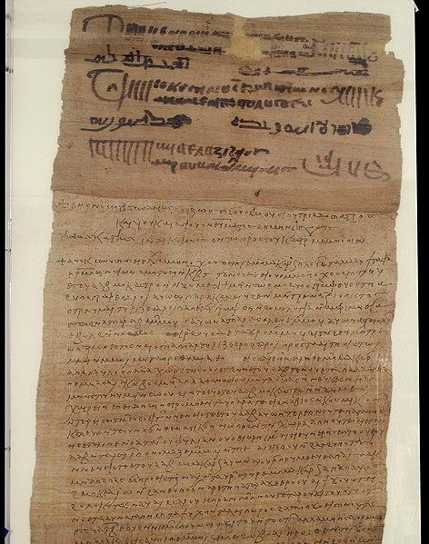 papyrus - image 7