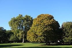 Parc Montsouris @ Paris (29860614110).jpg