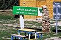 Parc National de Theniet El Had الحظيرة الوطنية لثنية الحد.jpg