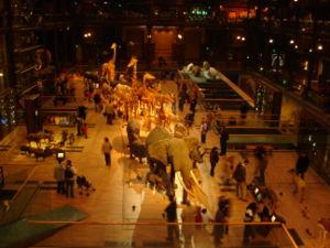 Interior da Grande Galeria da Evolução