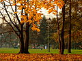 Park Jordana5.jpg