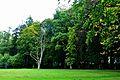 Park w Tychowie (5).JPG