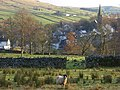 Pasture, Alston - geograph.org.uk - 1067549.jpg