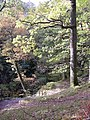 Path down to the upper bridge, Aira Force, Watermillock township, Matterdale CP - geograph.org.uk - 280202.jpg
