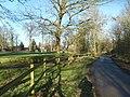 Patshull Lane - geograph.org.uk - 1692374.jpg