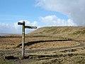 Pennine Bridleway beneath Cowpe Lowe - geograph.org.uk - 123868.jpg