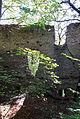 Perchtoldsdorf Kammerstein Westmauer Fensteröffnungen.jpg