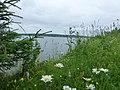 Permskiy r-n, Permskiy kray, Russia - panoramio (1203).jpg