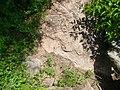Petroglifo - panoramio (1).jpg