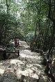 Phú Mỹ, Tân Thành, Ba Ria - Vung Tau, Vietnam - panoramio (22).jpg