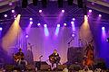 Photo - Festival de Cornouaille 2012 - Graeme Allwright en concert le 28 juillet - 018.jpg