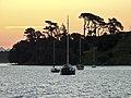 Pilot Bay Sunset (5487861488).jpg